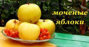 Рецепт Моченых Яблок с Красной Рябиной